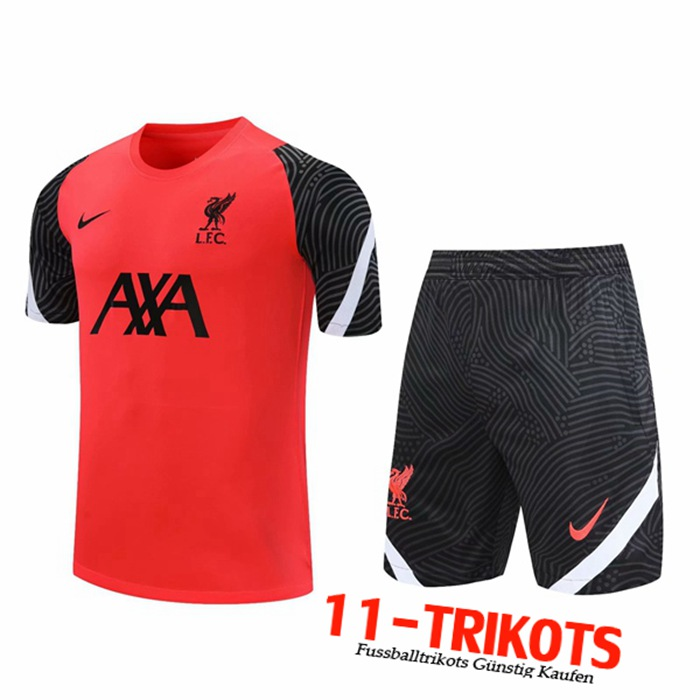 Neuestes FC Liverpool Trainingstrikot + Shorts Rot 2020/2021 | 11-Trikots